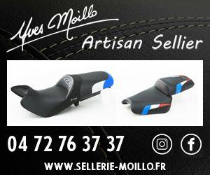 Sellerie Moillo